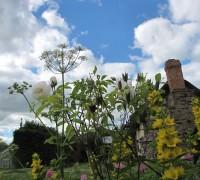 Gardens (15)