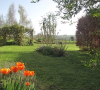 House and Gardens (22)