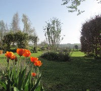 House and Gardens (25)